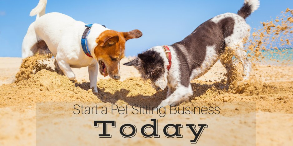 Starting a Pet Sitting Business The Easy Way